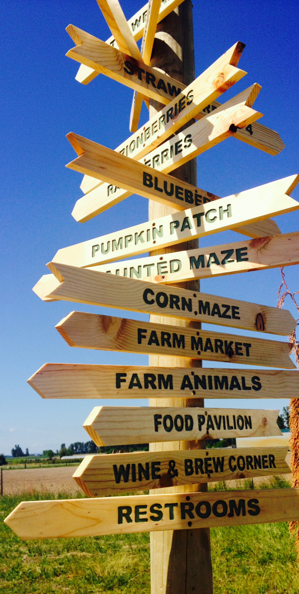cute directional signs
