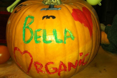 Bella Organic Painted pumpkin