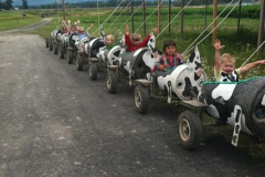 Kids-on-cow-train