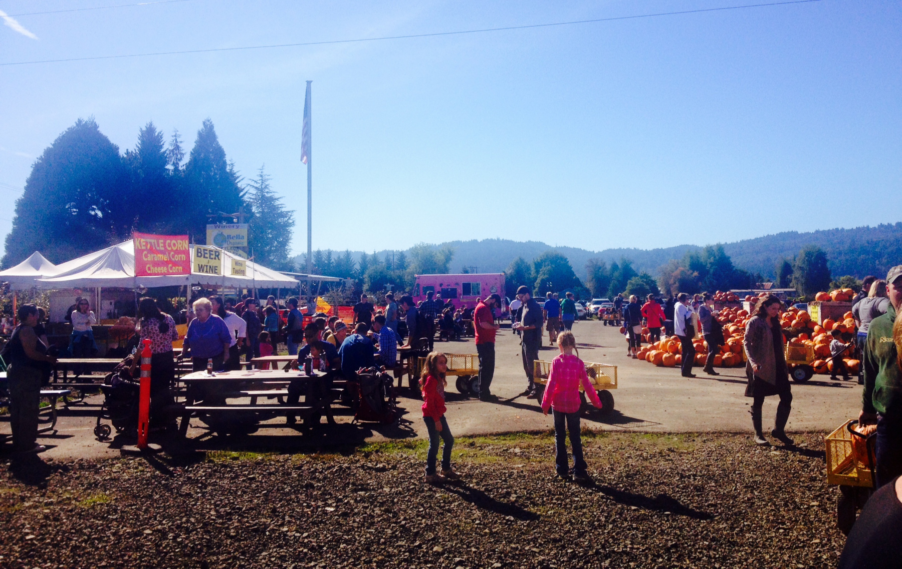 farm pumpkin crowd