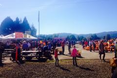farm pumpkin crowd